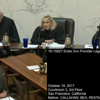 Attorney Louis Sirkin argues before a three-judge appellate panel in Erotic Services Provider Legal Education and Research Project (ESPLERP) v. Gascon