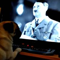 screenshot of a pug watching a computer monitor on which a video about Adolf Hitler is playing