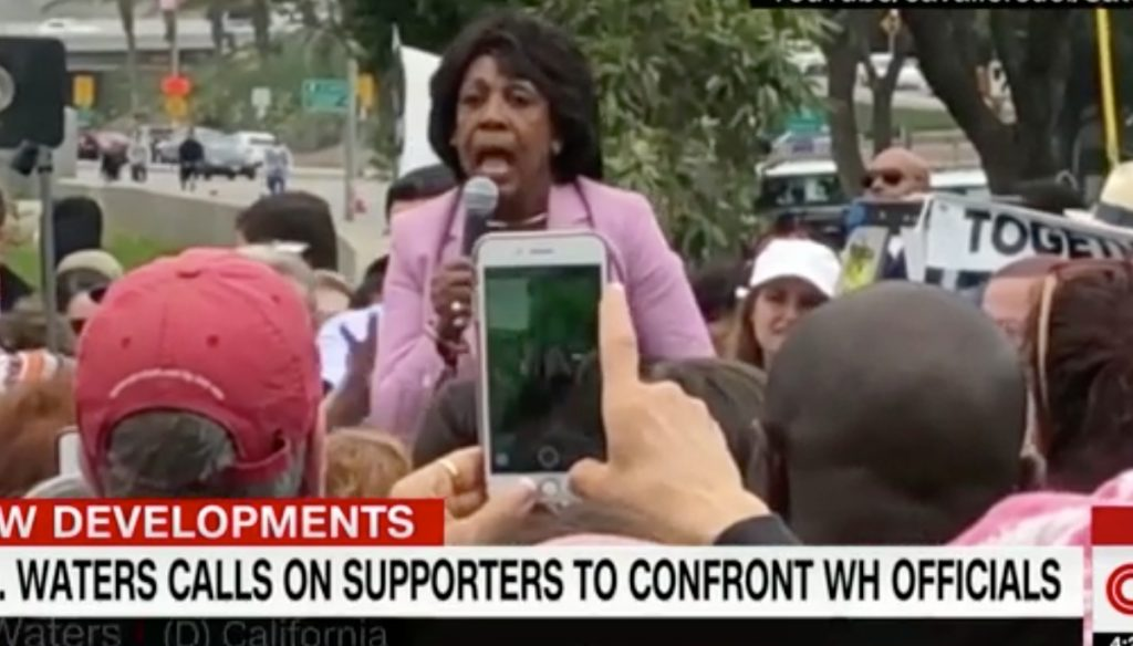 Photo of Congresswoman Maxine Walters speaking into a mic at a rally.