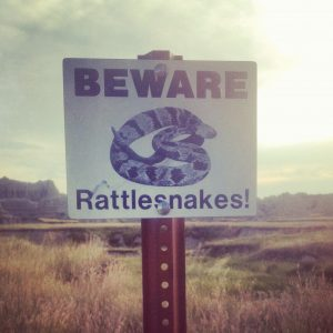 mountain desert landscape with prominent sign in the foreground with a drawing of a snake and the words: BEWARE Rattlesnakes