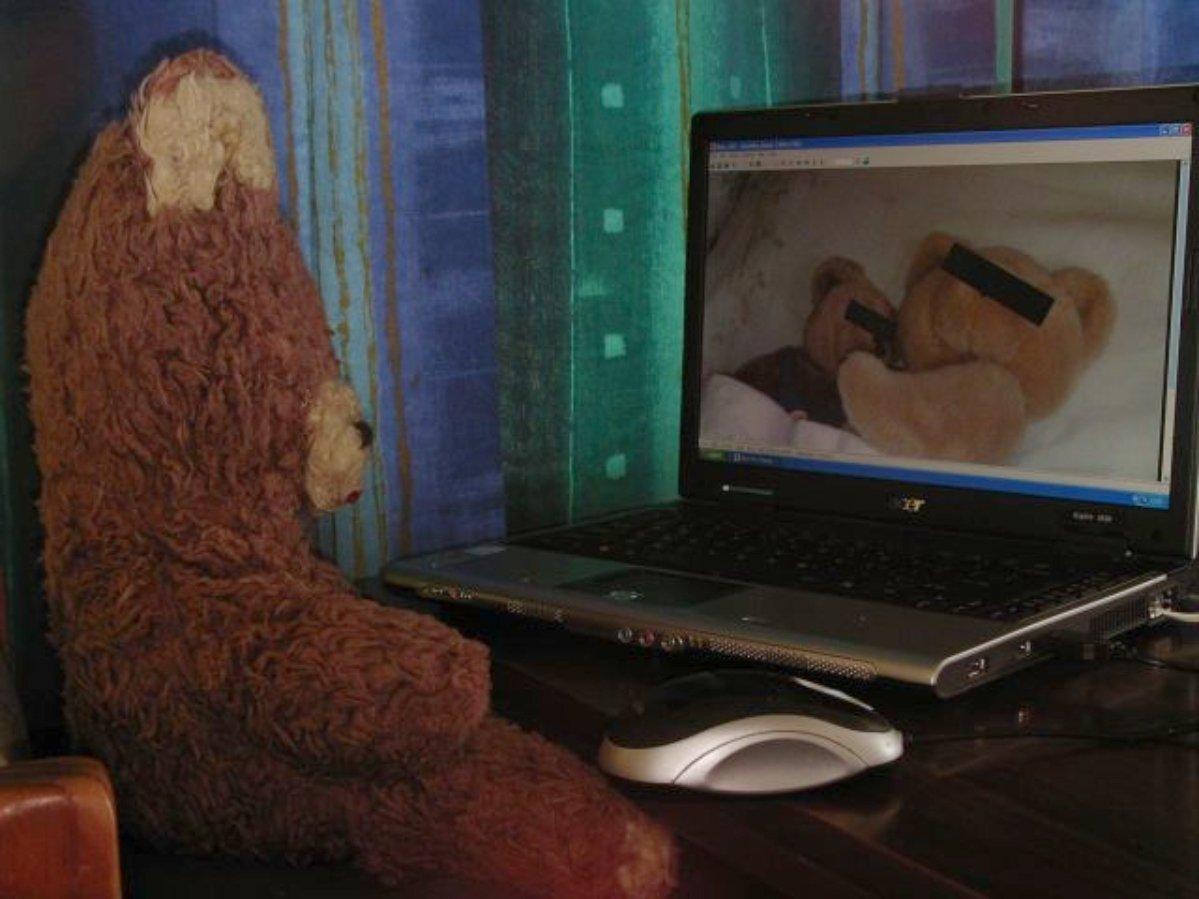 Teddy bear watching Teddy bear porn.